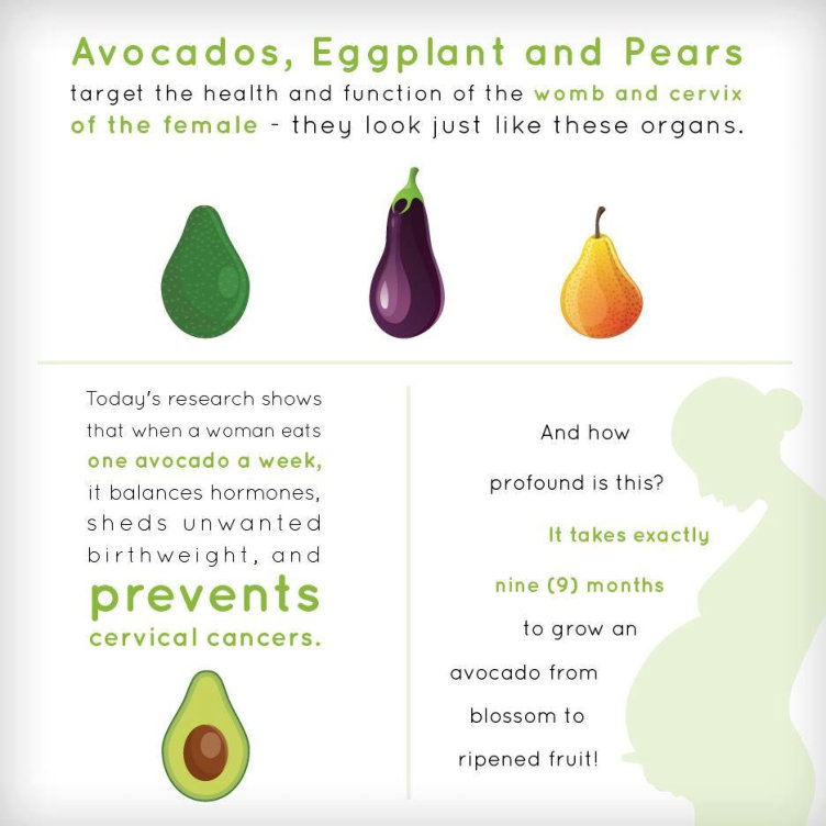 One Avocado Per Week - graphic