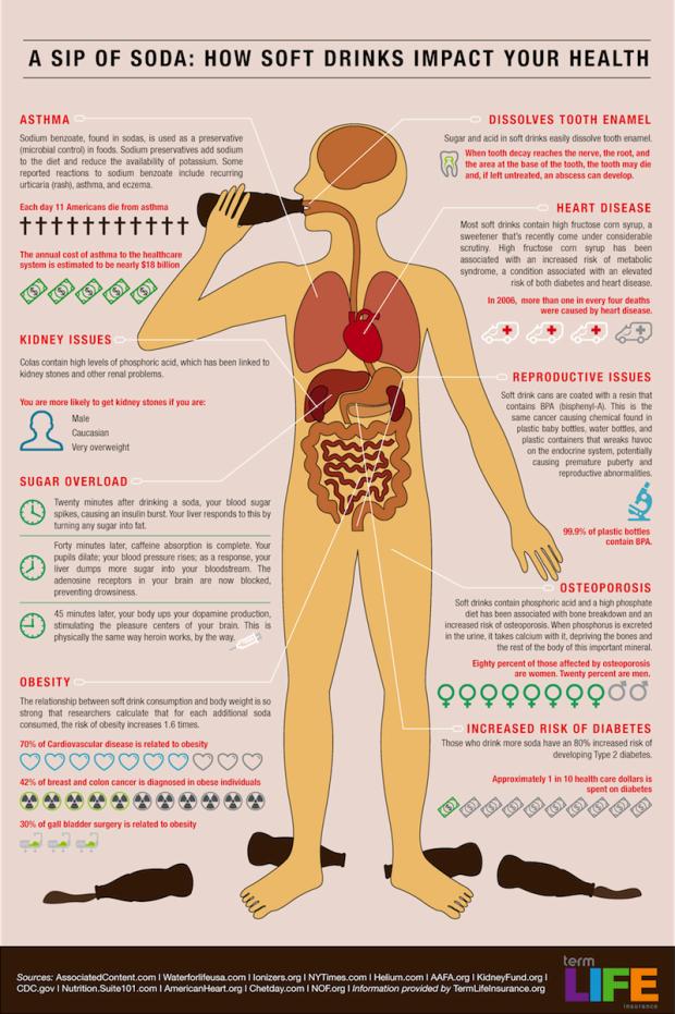 Soda in the Body - infographic