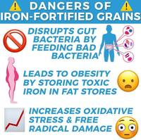Dangers of Iron Fortified Grains