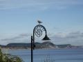 Lyme-Regis-Seagull