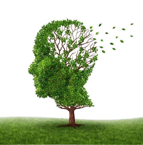 A holistic approach to Alzheimer's